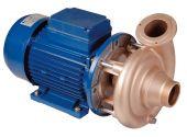 """Насос без префильтра (помпа) Hugo Lahme RG 2,2 кВт 380 В, подключение G2"""""""